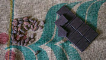 fève de chocolat